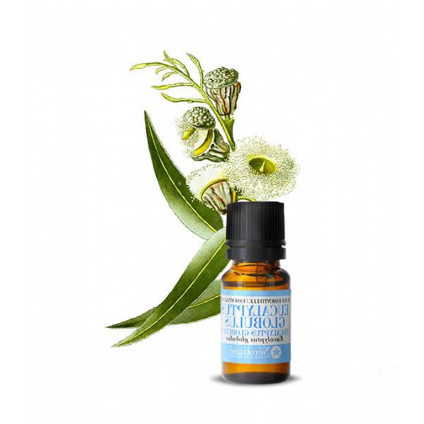 huile essentielle d eucalyptus