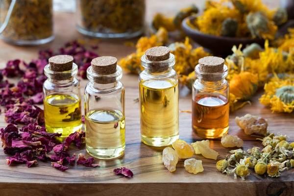 Diffuseur huile essentielle nature et decouverte - Livraison 24h